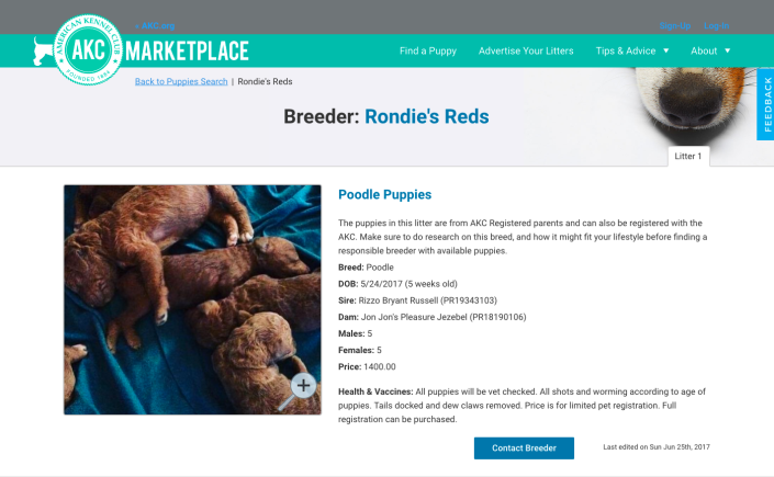 Listed on AKC Marketplace – Rondie's Reds